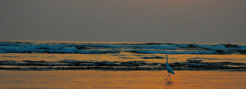 Karachi beach at sunset